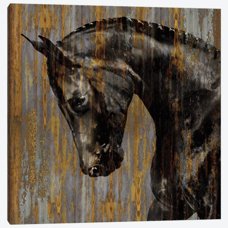 Horse I Canvas Print #MRO4} by Martin Rose Canvas Artwork