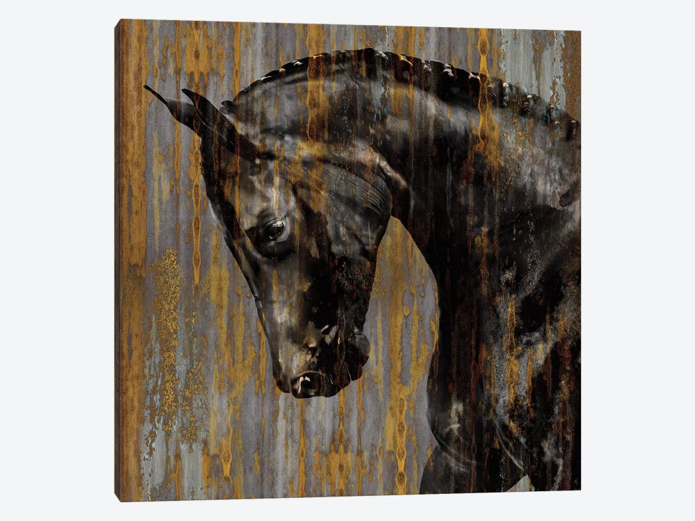 Horse I by Martin Rose 1-piece Art Print