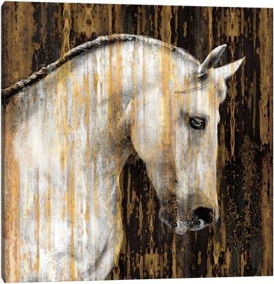 Horse II Canvas Print #MRO5