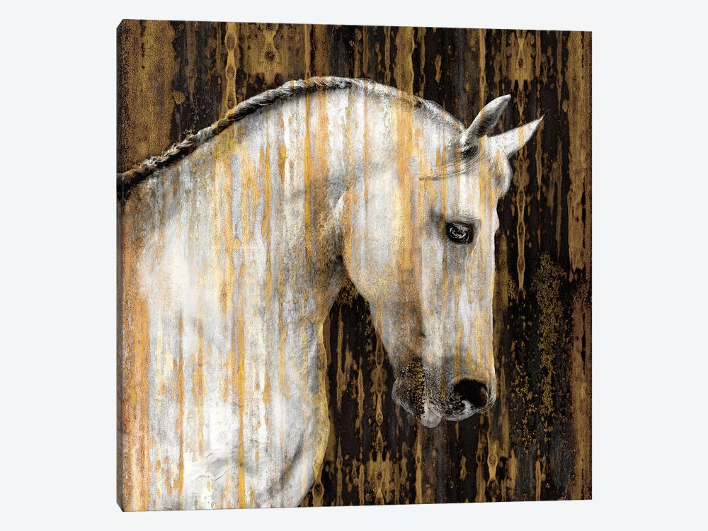 Horse II by Martin Rose 1-piece Canvas Artwork
