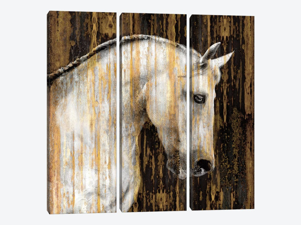 Horse II by Martin Rose 3-piece Canvas Wall Art