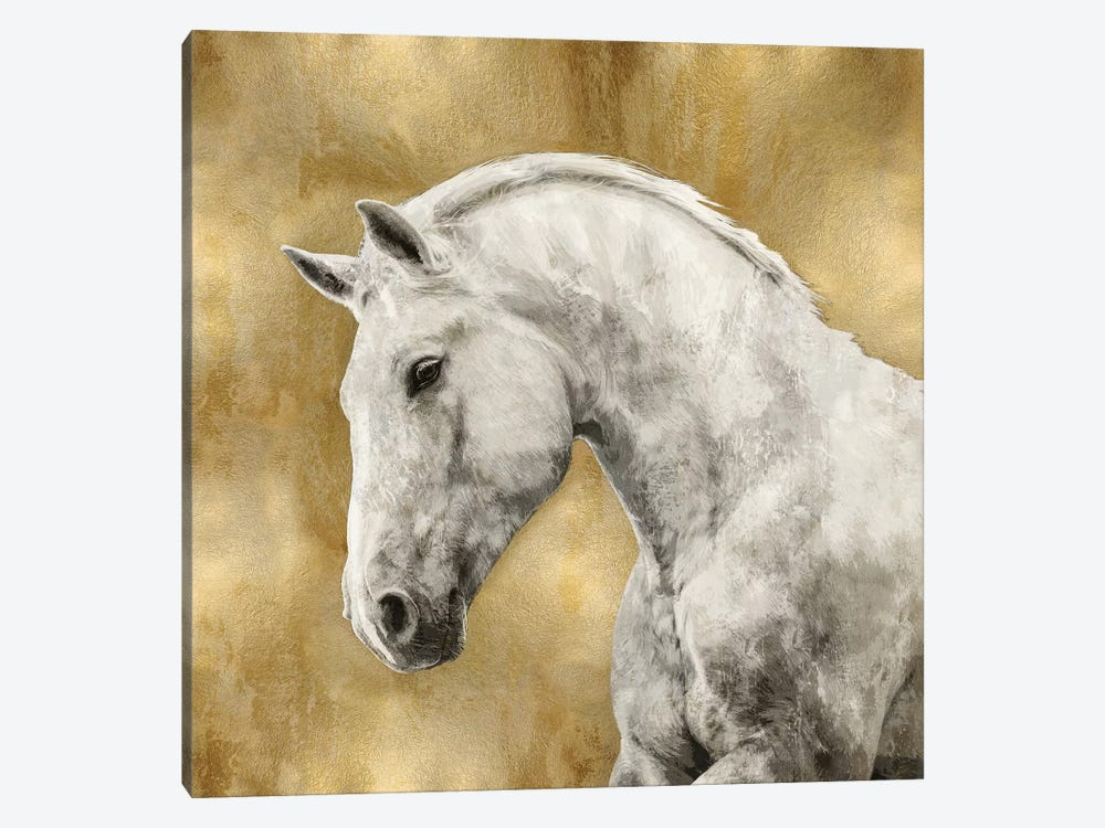White Stallion On Gold by Martin Rose 1-piece Canvas Wall Art