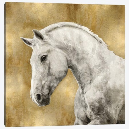 White Stallion On Gold Canvas Print #MRO7} by Martin Rose Canvas Artwork