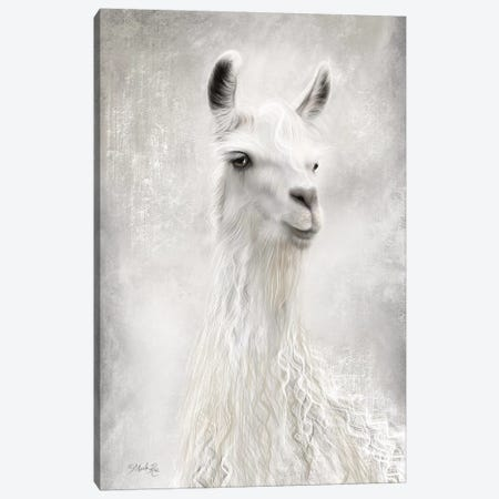 Lulu the Llama Up Close Canvas Print #MRR114} by Marla Rae Canvas Art