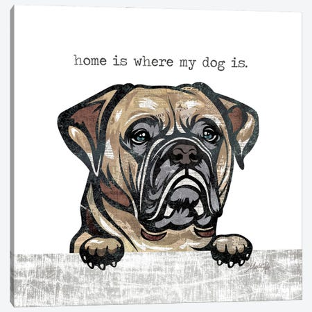 Home is Where My Dog Is Canvas Print #MRR228} by Marla Rae Canvas Print