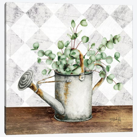 Eucalyptus White Watering Can Canvas Print #MRR242} by Marla Rae Art Print