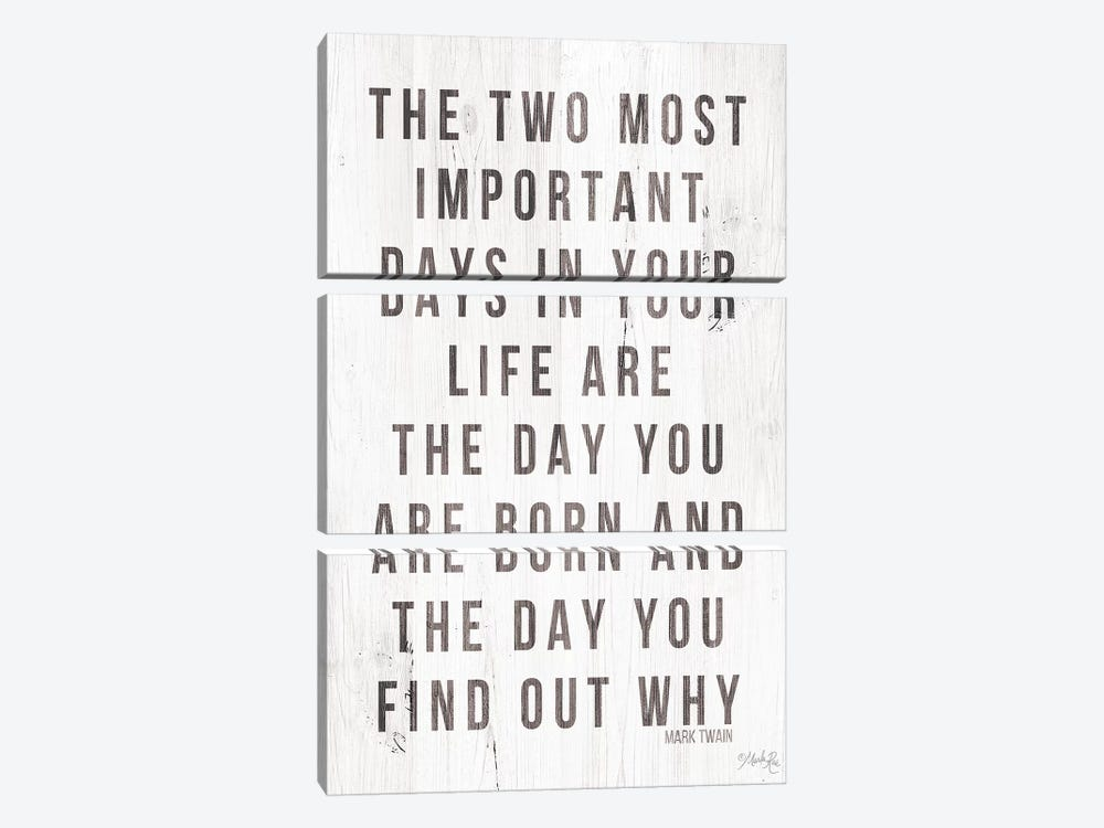 Two Most Important Days by Marla Rae 3-piece Canvas Art