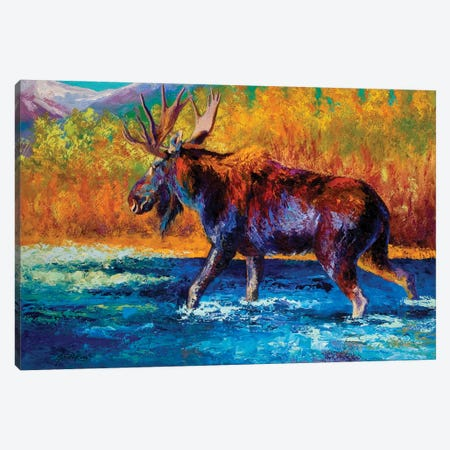 Autumn's Glimpse Moose Canvas Print #MRS10} by Marion Rose Canvas Art