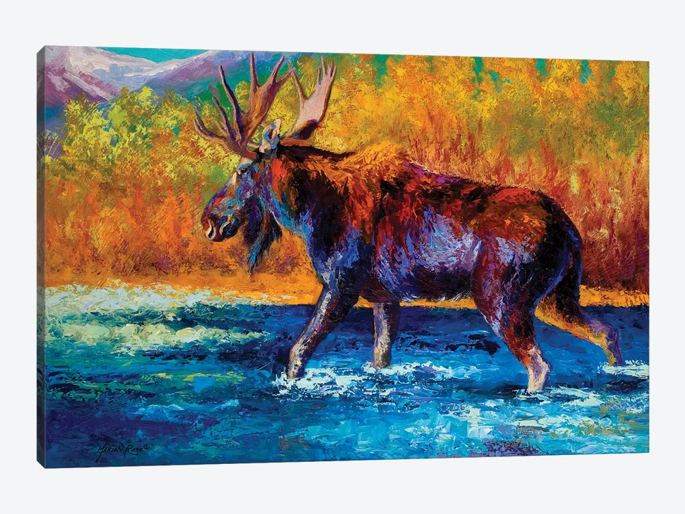 Autumn's Glimpse Moose by Marion Rose 1-piece Canvas Print