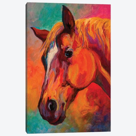 Bandit Canvas Print #MRS11} by Marion Rose Canvas Wall Art