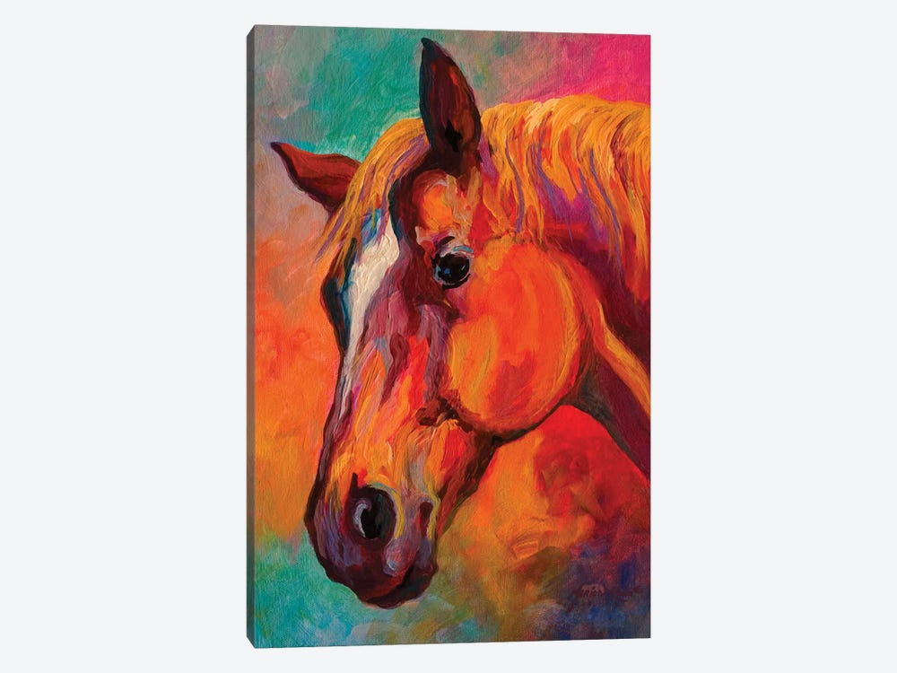 Bandit by Marion Rose 1-piece Canvas Art