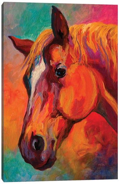 Bandit Canvas Art Print