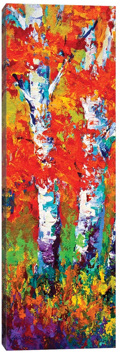 Birch Tree Canvas Art Print