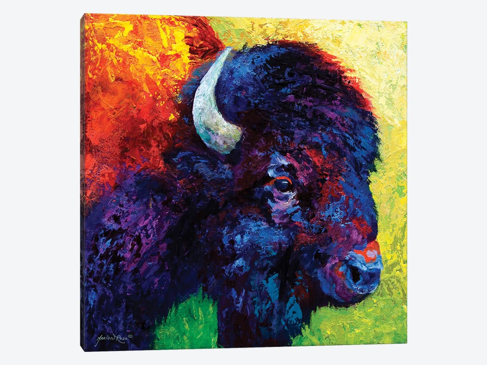 Bison Head III by Marion Rose 1-piece Art Print