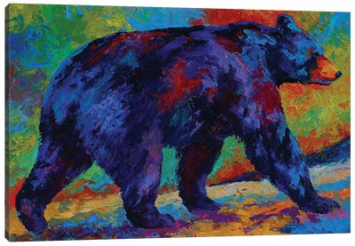 Black Bear III Canvas Art Print
