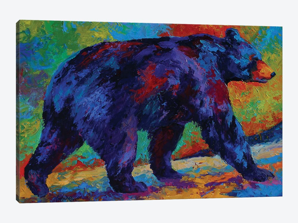 Black Bear III by Marion Rose 1-piece Canvas Art Print