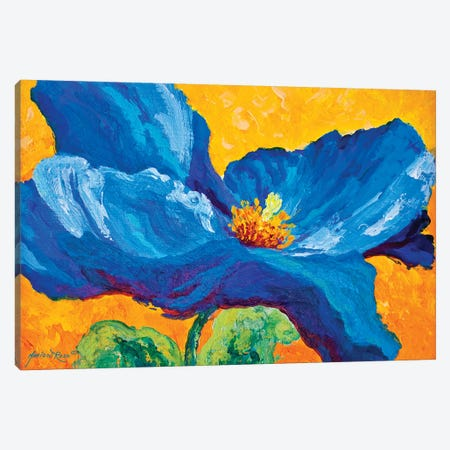 Blue Poppy II Canvas Print #MRS24} by Marion Rose Canvas Wall Art