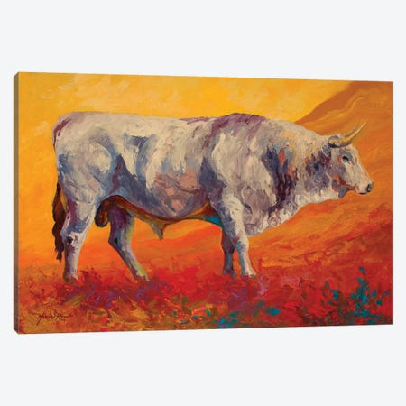Bull Market Canvas Print #MRS26} by Marion Rose Canvas Art