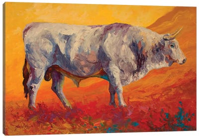 Bull Market Canvas Art Print