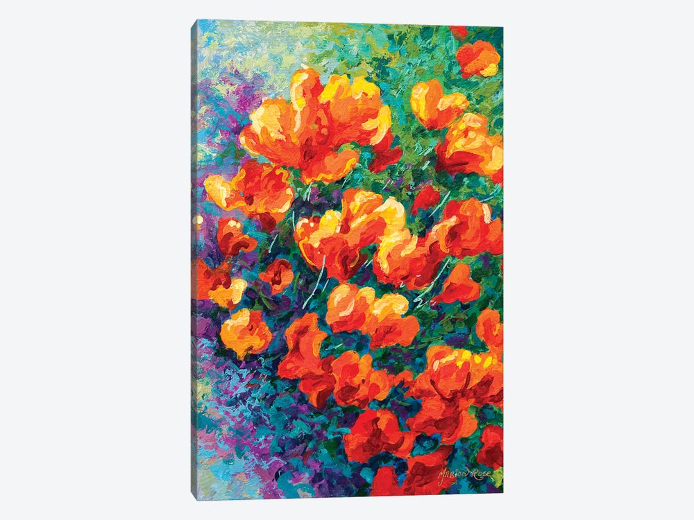 California Poppies by Marion Rose 1-piece Canvas Print
