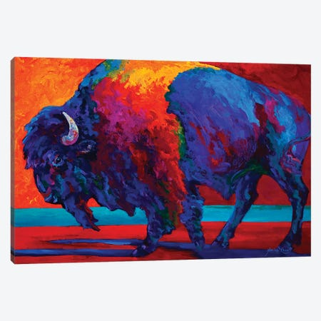Abstract Bison Canvas Print #MRS2} by Marion Rose Canvas Artwork