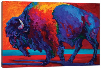 Abstract Bison Canvas Art Print