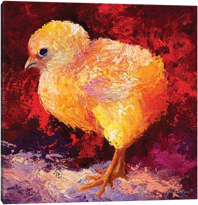Chick Flick III Canvas Art Print