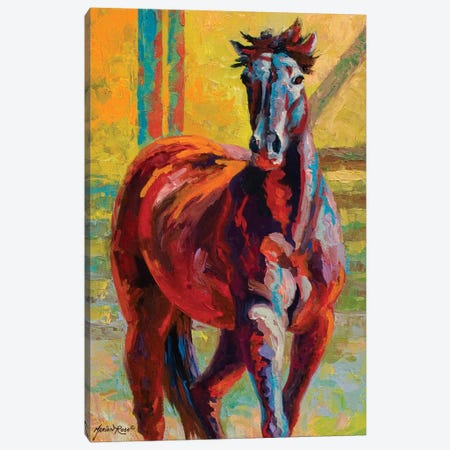 Corral Boss Canvas Print #MRS34} by Marion Rose Canvas Art Print