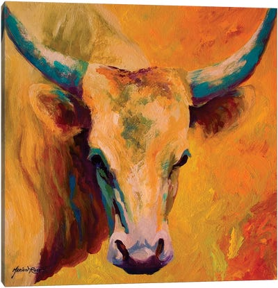 Creamy Texan Canvas Art Print