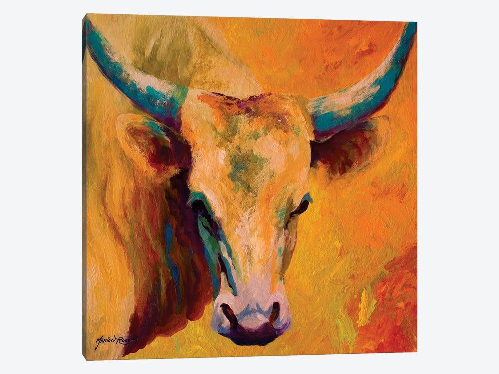 Creamy Texan by Marion Rose 1-piece Canvas Artwork