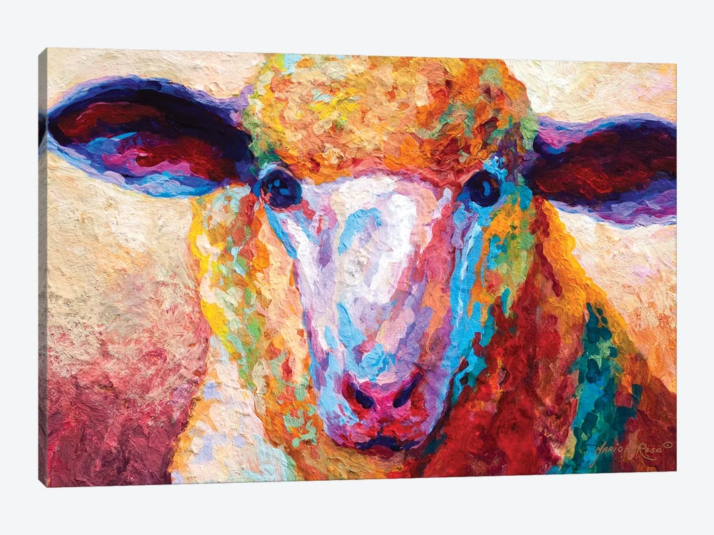 Dorset Ewe by Marion Rose 1-piece Canvas Artwork