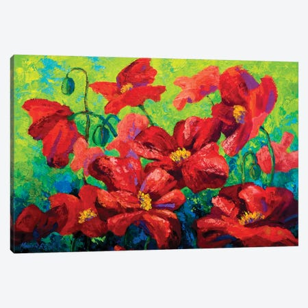 Field Of Poppies II Canvas Print #MRS44} by Marion Rose Canvas Wall Art