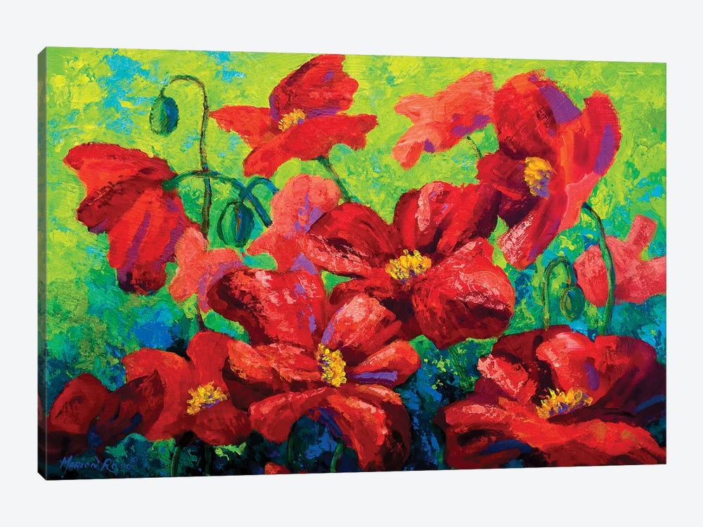 Field Of Poppies II by Marion Rose 1-piece Canvas Art