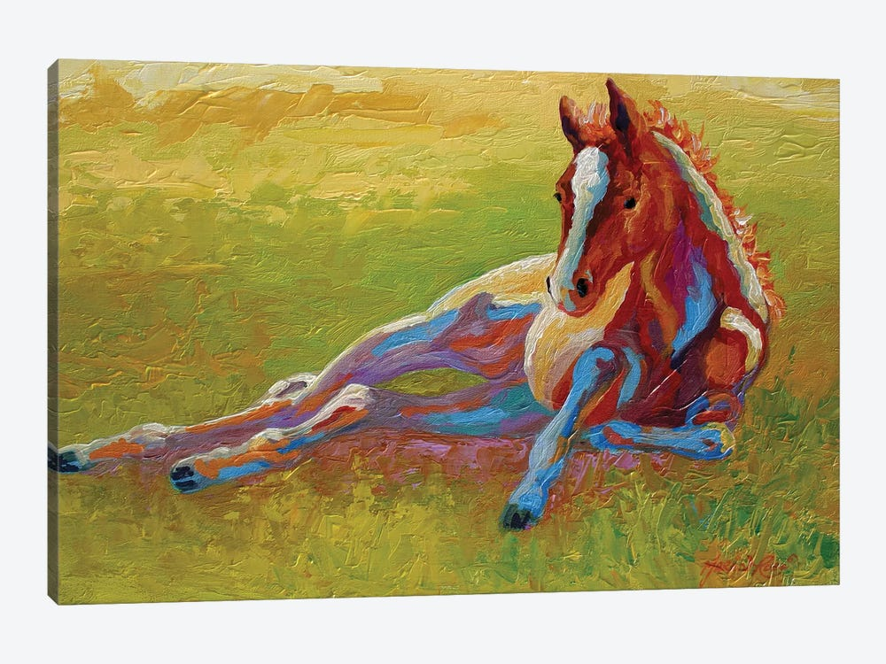Foal Lying by Marion Rose 1-piece Art Print
