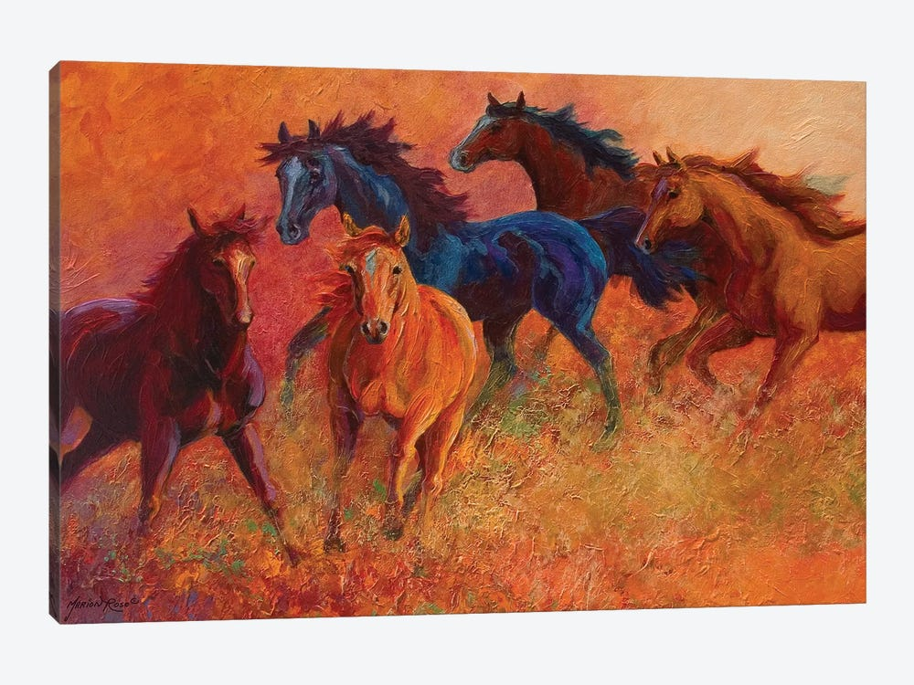 Free Range Horses by Marion Rose 1-piece Canvas Art Print