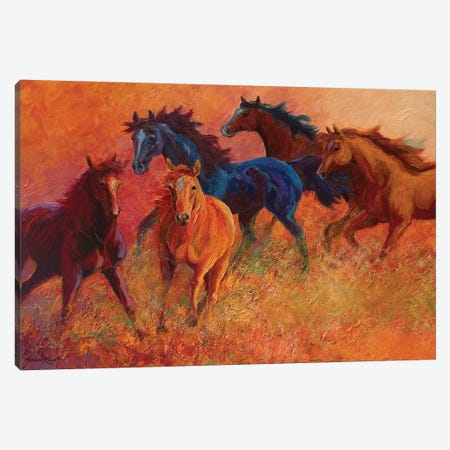 Free Range Horses 3-Piece Canvas #MRS47} by Marion Rose Canvas Art