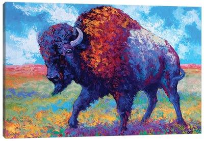 Good Medicine Canvas Art Print