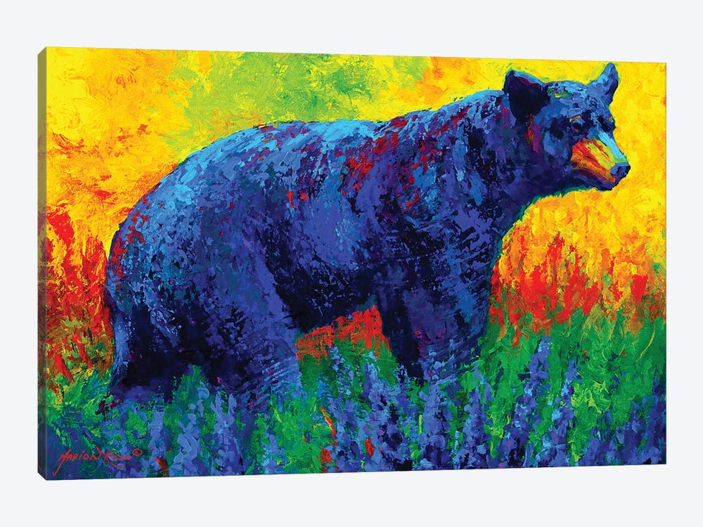 Loafing In The Lupin by Marion Rose 1-piece Canvas Artwork