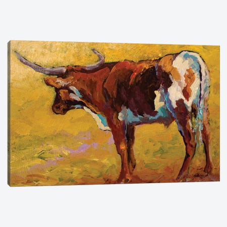 Longhorn Portrait, Back 3-Piece Canvas #MRS56} by Marion Rose Canvas Art Print