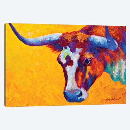 Longhorn Portrait Canvas Print #MRS59} by Marion Rose Canvas Art