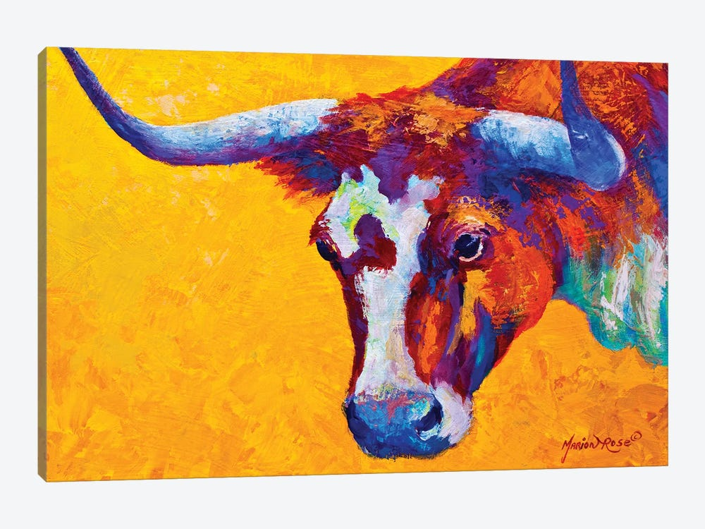 Longhorn Portrait by Marion Rose 1-piece Canvas Artwork