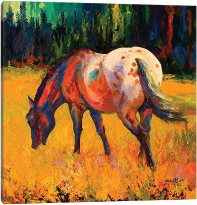 Appy II Canvas Art Print