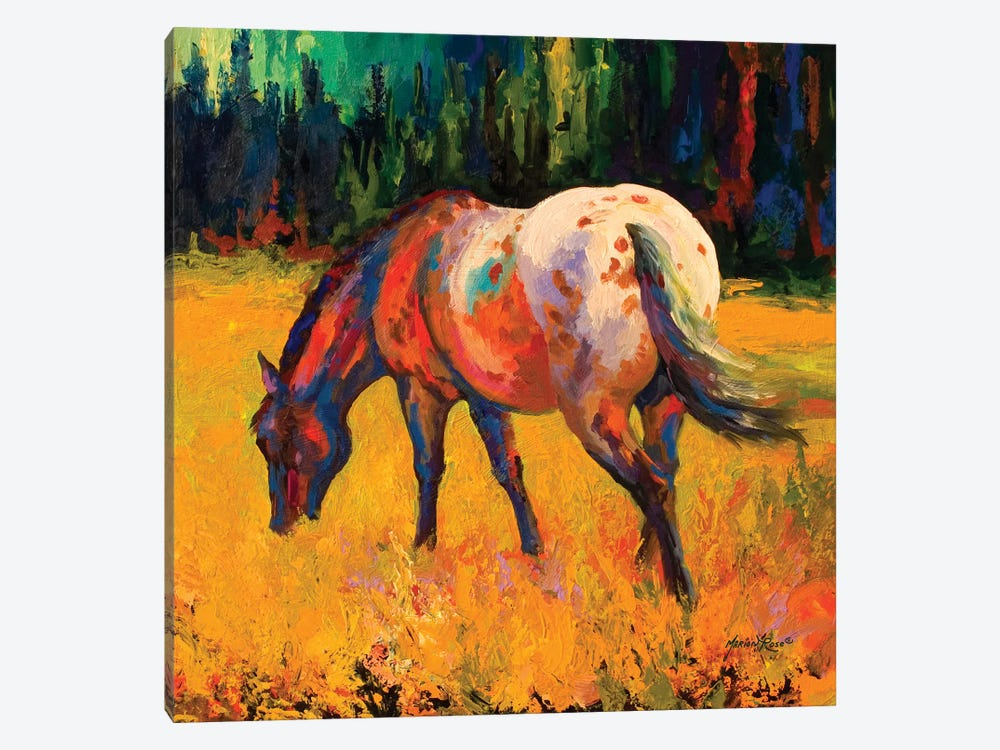 Appy II by Marion Rose 1-piece Canvas Wall Art
