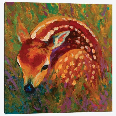 New Fawn 3-Piece Canvas #MRS61} by Marion Rose Canvas Art Print