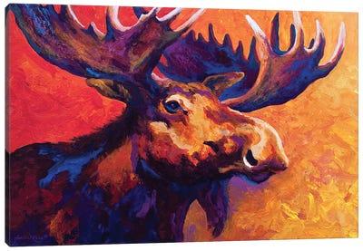 Noble Pause Canvas Art Print