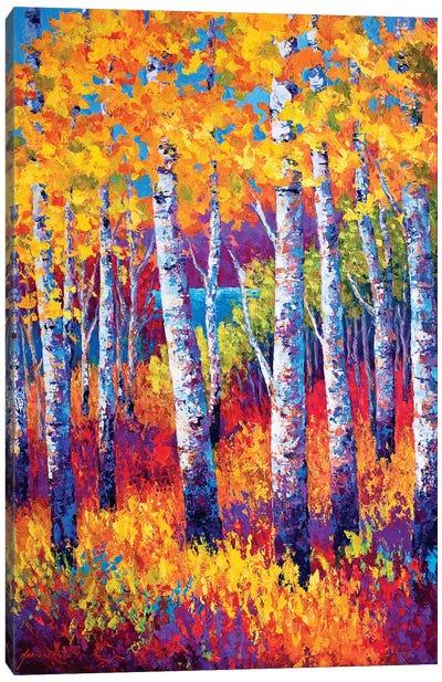 Path To The Lake Canvas Art Print