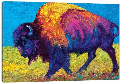 Prairie Dusk Canvas Art Print
