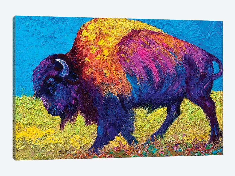 Prairie Dusk by Marion Rose 1-piece Canvas Artwork