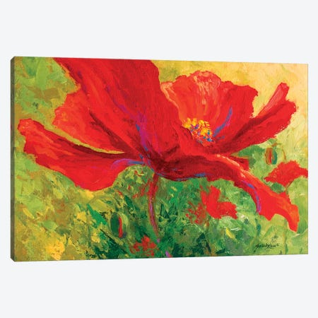 Red Poppy I Canvas Print #MRS71} by Marion Rose Canvas Artwork