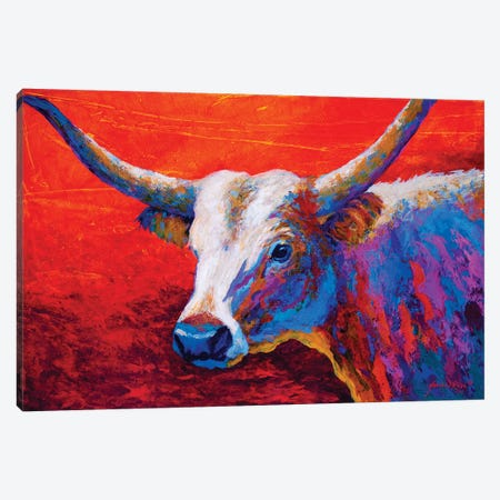 Sunset Ablaze Longhorn Canvas Print #MRS84} by Marion Rose Canvas Artwork